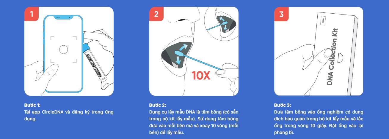quy trình thực hiện circle DNA